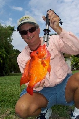 Florida invasive exotic cichlid fish florida fish for Invasive fish in florida
