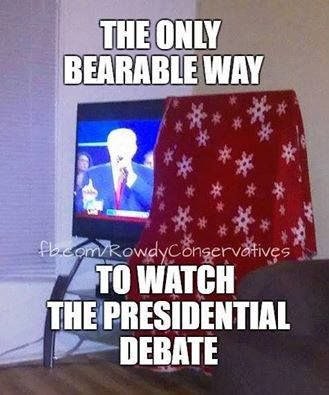 LMAO !!!! SO TRUE !!! HAHA..I love it ! 👍 ...although I can't stand the sound of her voice either...all the bull crap that comes out !! BLAH BLAH BLAH ... He was right on one end haha!  Go Trump!