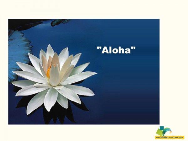 """que signifie aloa     """"Aloha""""signifie """"Aimer, """"être heureux avec"""" en langue hawaiienne, aimer et être aimé,  avoir du respect, de l'attention et de l'amour.  Sa racine """"alo"""" veut dire """"être avec"""", partager une expérience ici et mainte"""