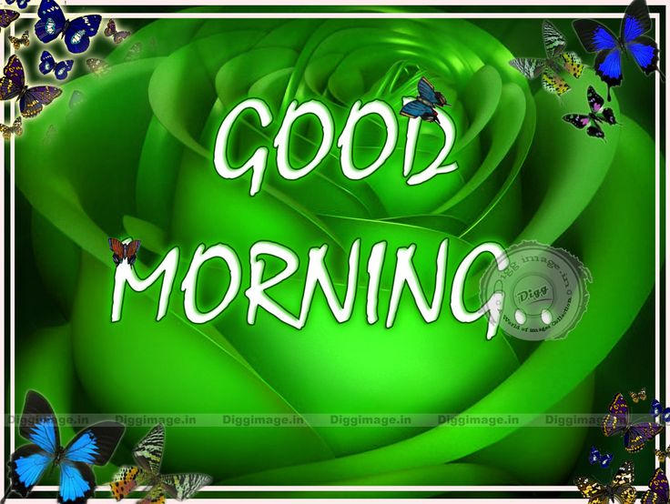 Good morning messages: wishes, quotes, poems smses, A good morning message is like a hug, an inspiration and the motivation to get out of bed and embrace a new day. Description from favload.com. I searched for this on bing.com/images