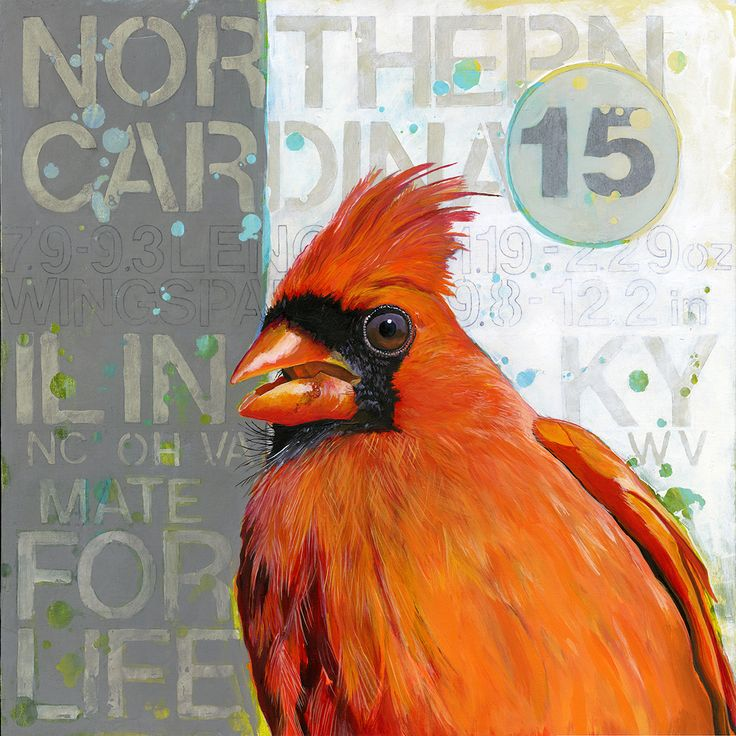 """Original Painting """"Northern Cardinal 15"""" Acrylic on Panel 16"""" x 16"""" by Artist Angie Carrier"""