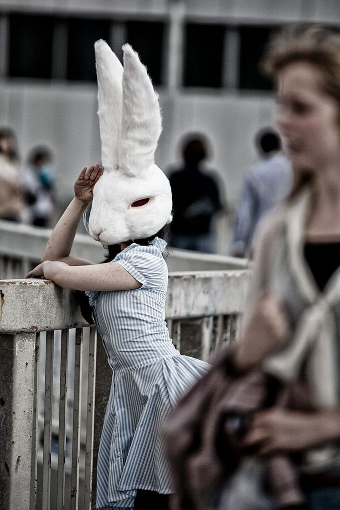 We should do this with the bunny from Dickson. I'm sure it'll look way more awesome!