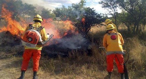 Incendios rurales: Defensa Civil trabaja en focos controlados y activos