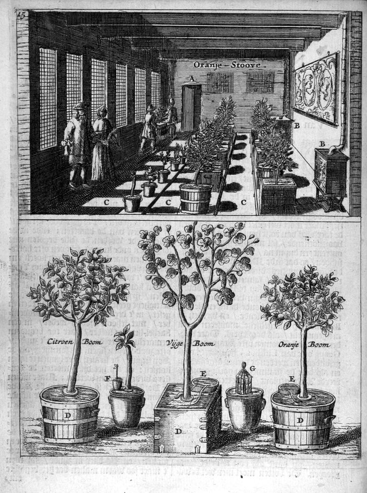 Den Nederlandtsen Hovenier (1670)