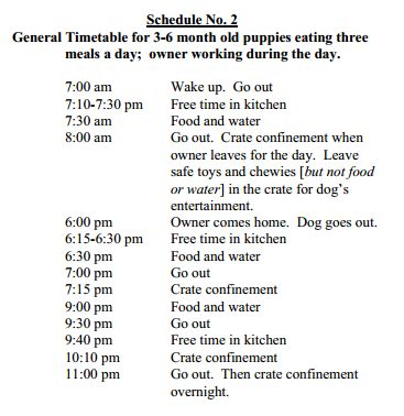 Best 25+ Puppy schedule ideas on Pinterest Goldendoodle training - work schedule
