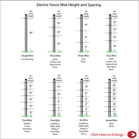 Electric Fence Wire  Spacing by Animal Chart