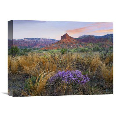 Global Gallery Caprock Canyons State Park Texas Canvas Wall Art - GCS-396004-2432-142