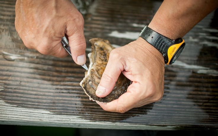 Learn the right technique for getting into these delicious + healthy bivalves without hurting yourself.