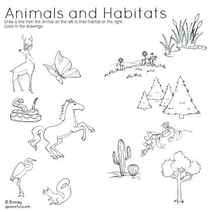 Coloring Pages Of Animals In Their Habitats Colouring And Homes 7 Animal Habitats Animal Worksheets Worksheets For Kids Animals and their habitats worksheets