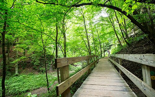 Nature Photography Simplified. Deep Depth of Field. Lasalle Canyon Starved Rock State Park