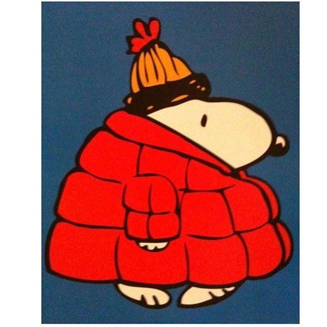 Snoopy the Norwegian fashion icon