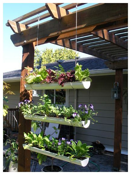 Awesome hanging planters with eatables for the porch.