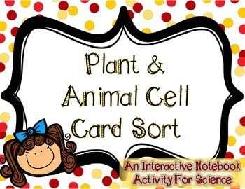 Cells Parts Card Sort - love this for my fourth graders!!