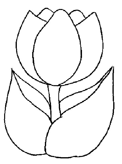 Tulip Template Printable | Coloring Pages for Kids