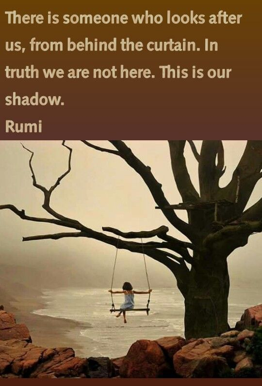 Rumi   This is our shadow.
