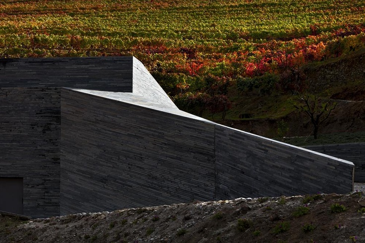 Quinta Do Vallado Winery: Winery Architecture, Wineries, More, Fifth, Gravity Winery, 06 Menos, Decampos Winery, Bodega Quinta
