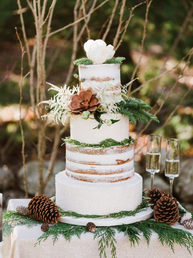 20 Crazy Gorgeous Winter Wedding Cakes | SouthBound Bride | http://www.southboundbride.com/20-crazy-gorgeous-winter-wedding-cakes | Credit: Annmarie Swift Photography/Cristen & Co./Sweet Indulgence via The Perfect Palette