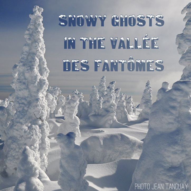 Reason 31 to visit #Saguenay_Lac : Snowy ghosts in the vallée des Fantômes! #Sport #175reasons #Winter