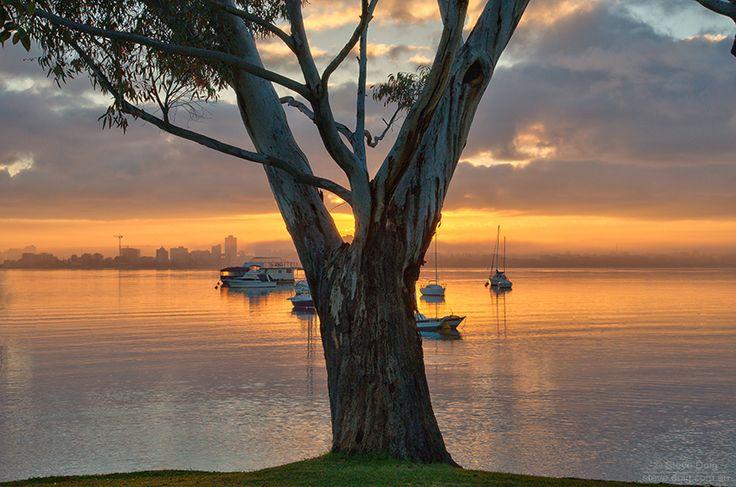 #Crawley #sunrise UWA Innovation UWA Tweet Perth. More at