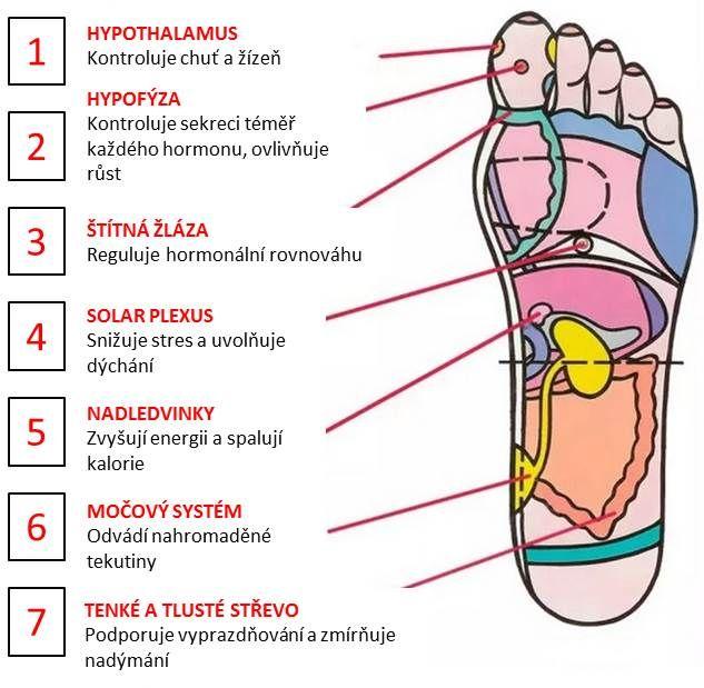 Těchto 7 bodů na noze vám uvolní stres a podpoří metabolismus | Alternativní Magazín.cz