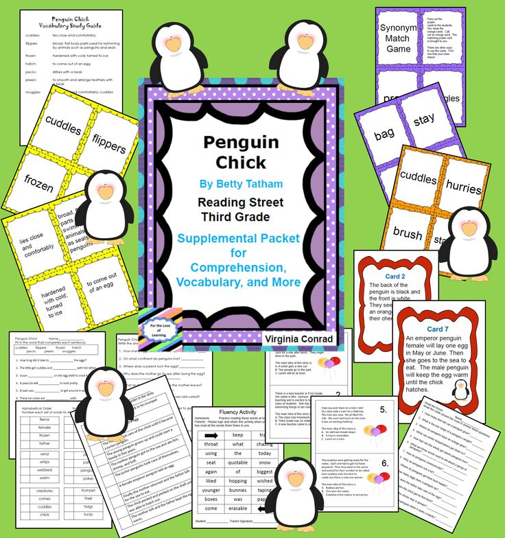 supplemental packet with things to boost comprehension, vocab, and more for this cute story--Penguin Chick