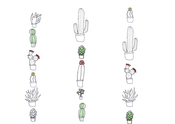 I'm thinking a really tiny cactus of succulent to represent Phoenix