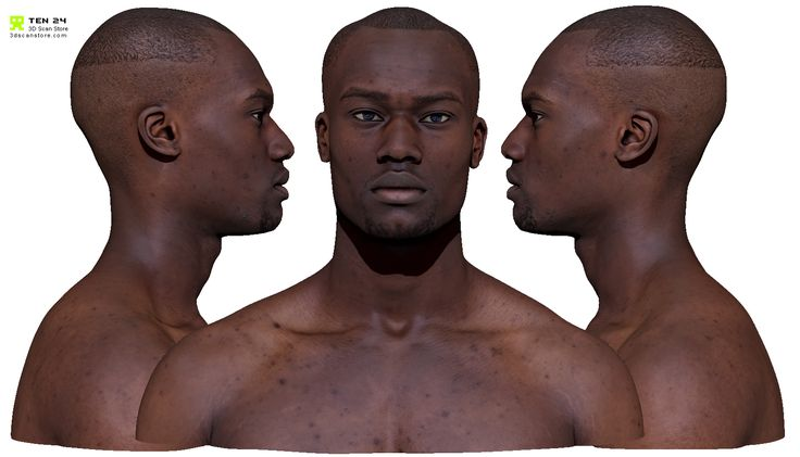Data Set 1 x Cleaned Neutral High-Resolution Head Scan ZTL and OBJ format (Zbrush 4R7 P3 or higher) 6 x Subdivision Levels Decimated OBJExported Level 1 Sub division in OBJ format 10,000 x 10,000 TGA (uncompressed) and JPG texturesSpec reduction and original textures 8k