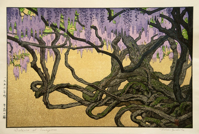Ukiyo-e Toshi Yoshida Wisteria at Ushijima by griffinlb, via Flickr