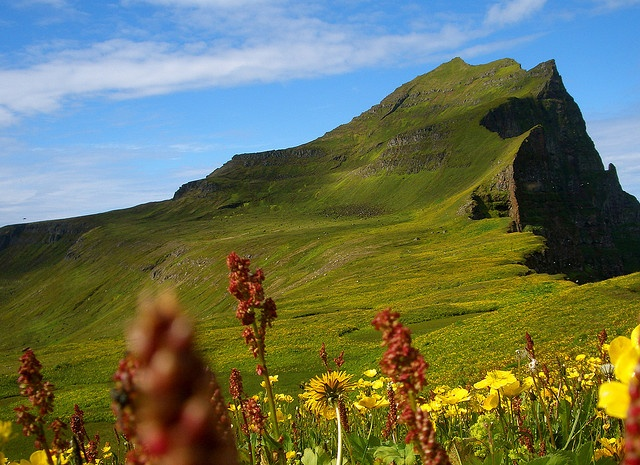 Hornstrandir, Iceland: If you need to get a hold of me on Aug 22nd, you can start by looking here.