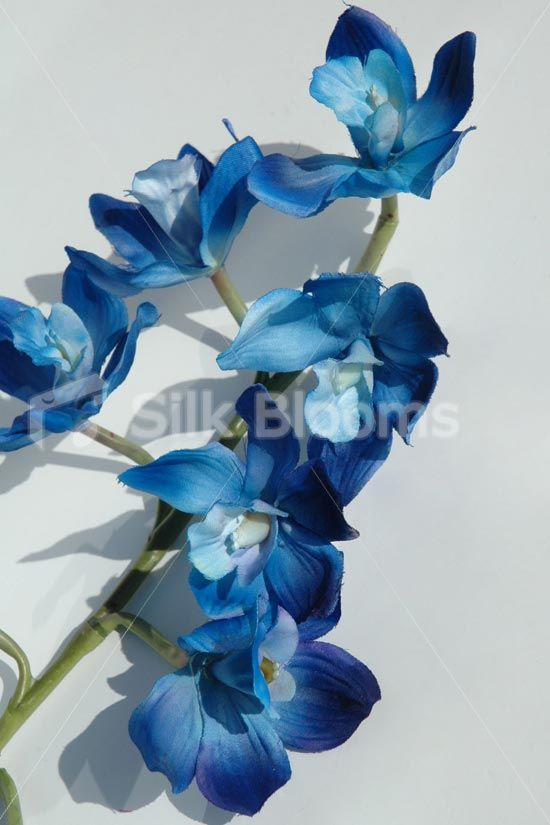 Artificial Galaxy Blue Orchids Singapore Dyed