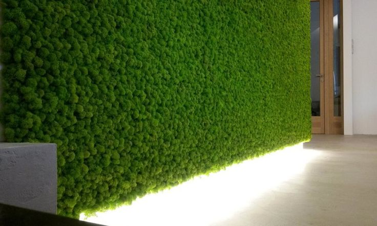 #ParetiVegetali by #LinfaDecor   Stabilized #plant walls and #panels. No water, no sunlight, no soil, no leaves fall. #Vegetal #handmade #greenwalls #interior #design #architecture #verdeverticale #green