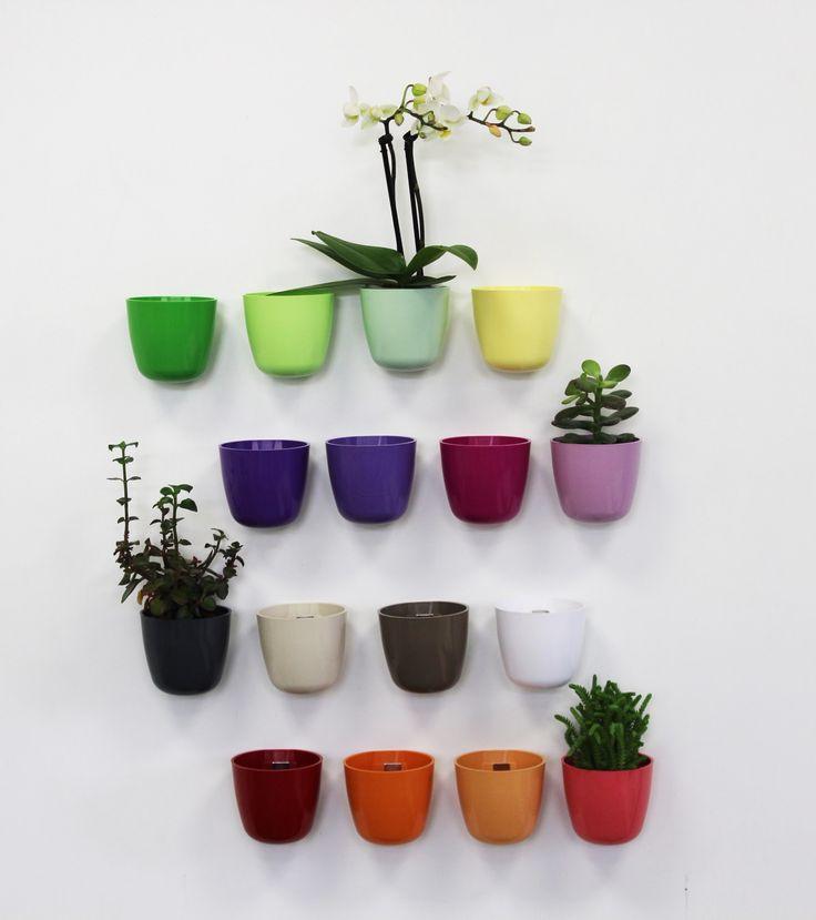 Greeat vertical garden solution
