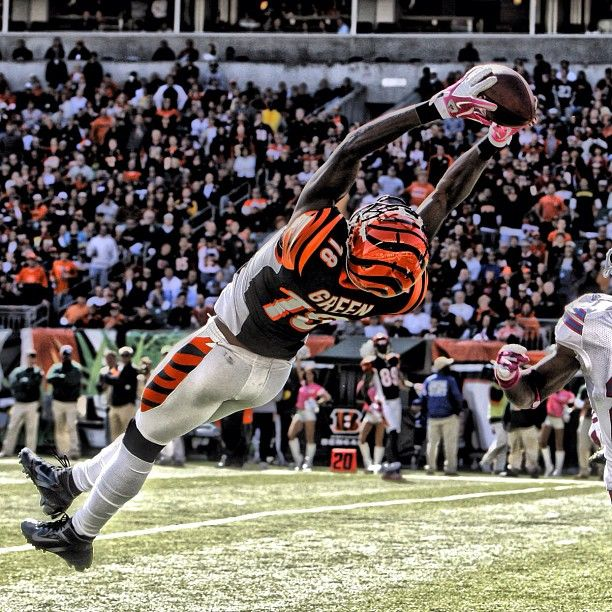 """""""Free Video Reveals . . . How You Can Get Paid To Blog About The Cincinnati Bengals!!"""" https://www.icmarketingfunnels.com/p/page/i3xdWnE"""