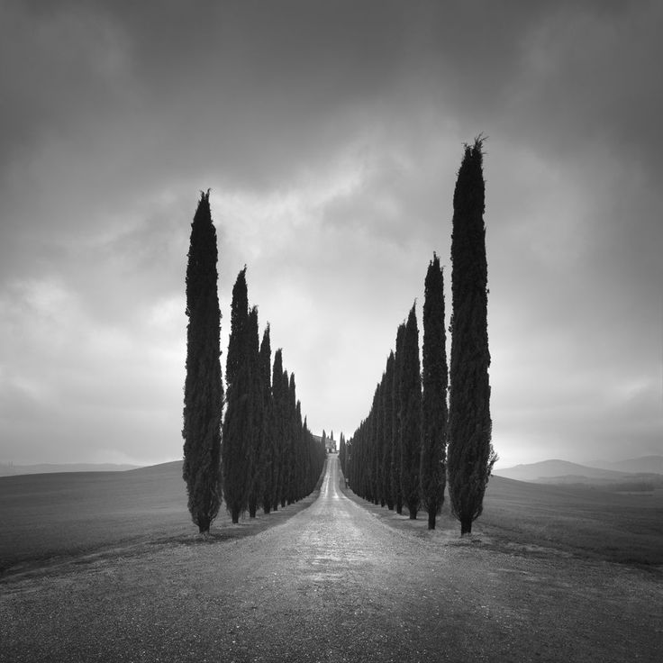 Near San Quirico d'Orcia in Tuscany
