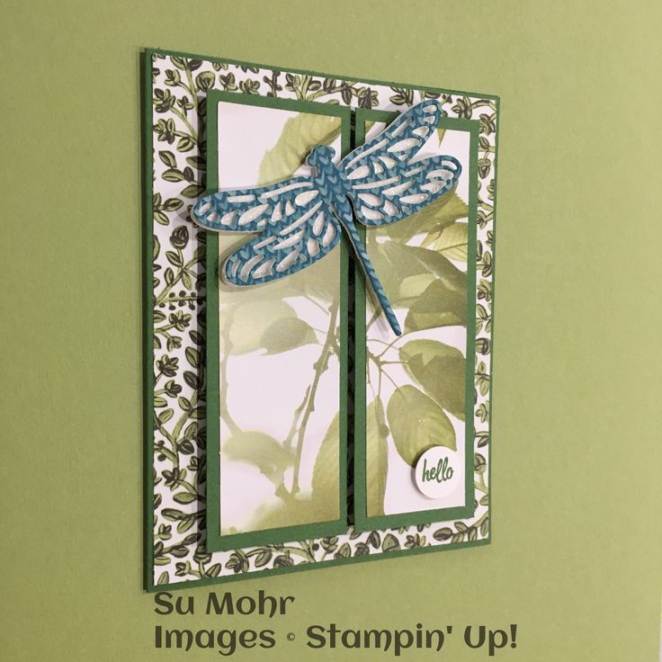 234 best handmade cards by su mohr images on pinterest gift card demonstrator business web site dbws for stampin up products project ideas and current promotions order stampin up product online from me anytime colourmoves