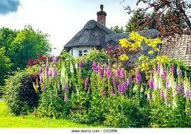 Bildergebnis für cottage garden