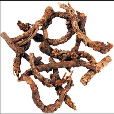 Kutki – Herb Picrorhiza Kurroa, Katuka Katki, Katuka, Kuru & Kadu