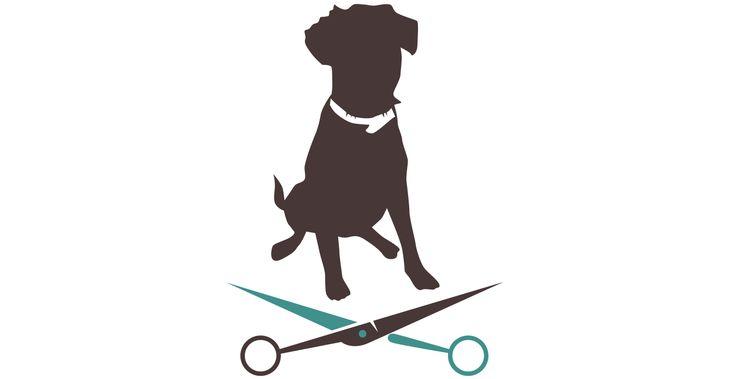 Waschen, bürsten, Augen und Ohren pflegen – das dienst nicht allein der Schönheit, sondern der Gesundheit und dem Wohlbefinden des Hundes.
