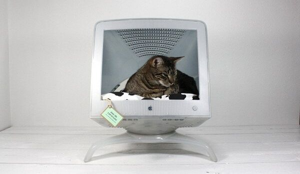 Upcycled Apple Computer Pet Bed, I don't have cats....but thought of my friends that do! Cute, cute, cute! I don't see why you couldn't do the same with the older TV's either~