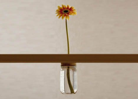 DIY . This flower rises literally from the table