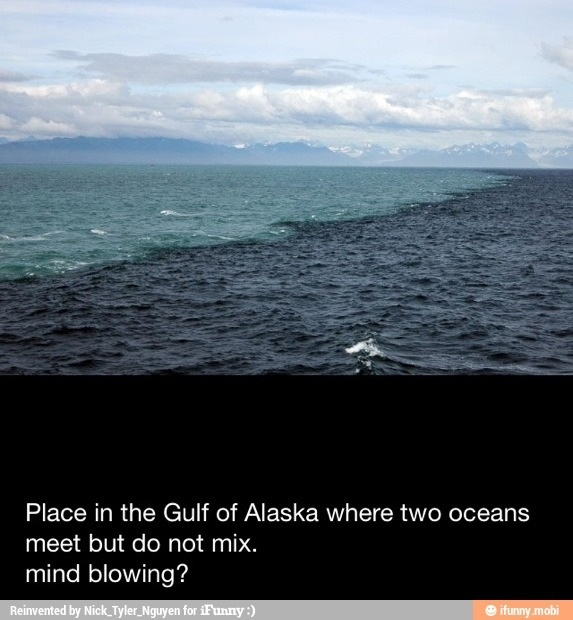 2 oceans meet but do not mix why