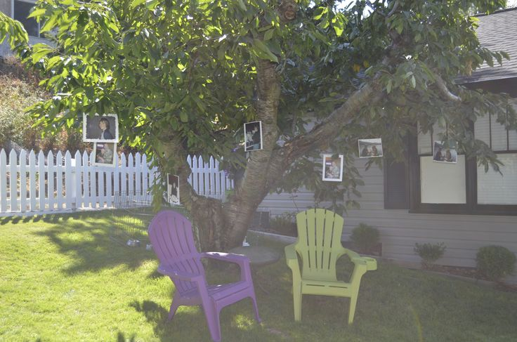 Garden wedding. Pictures of the couple in the old Cherry Trees. A place for guests to relax