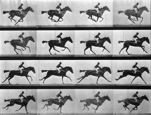 Muybridge @ SFMOMA!!! http://www.sfmoma.org/exhibitions/418 I was really bummed when I missed this at the Tate Museum in London in November… but now!!!! Muybridge is at the SF MOMA! #Muybridge  Get to it…