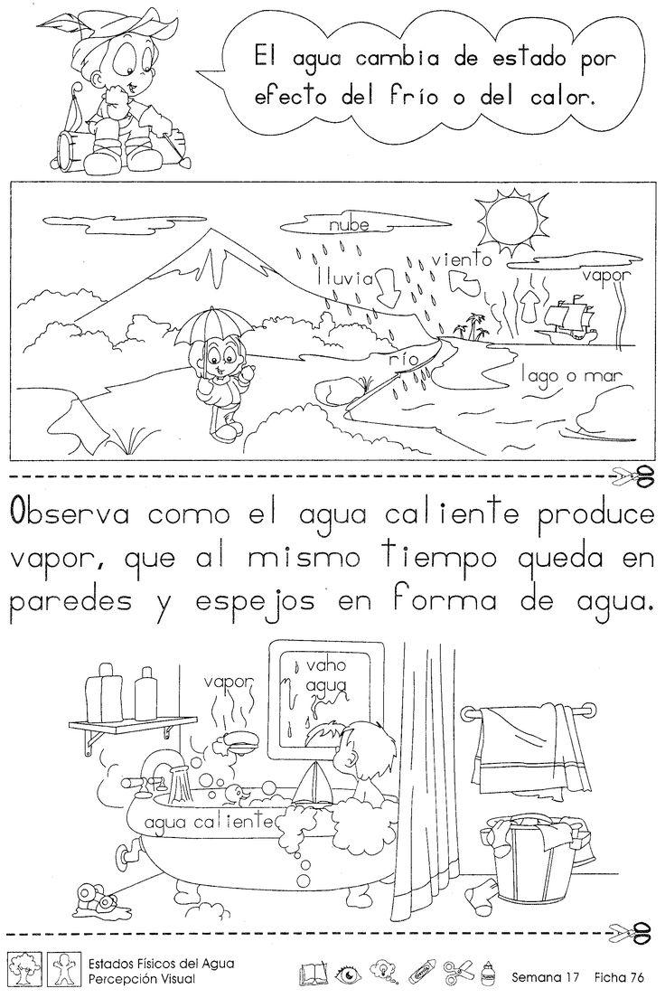 13 best Los cinco sentidos images on Pinterest | Spanish class ...