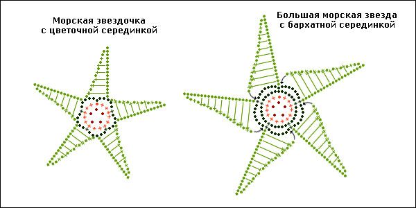 StarFishesSchema2.jpg