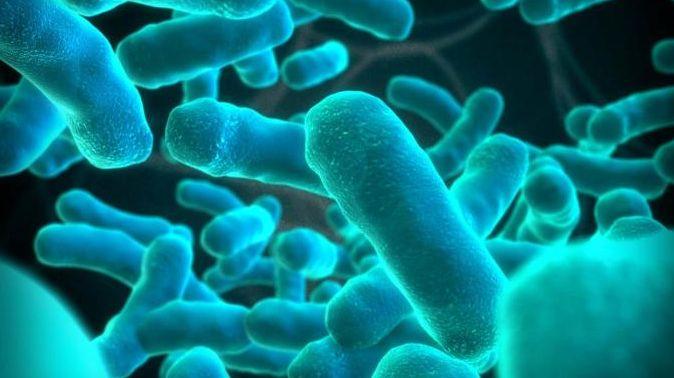 Listeria (Listeriosis): Causes, Symptoms and Prevention