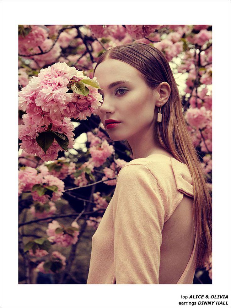 Cherry Blossom by Luzena Adams