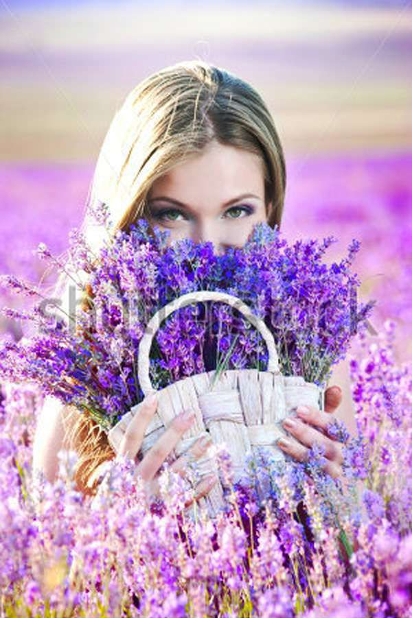 ~In the lavender field~                                                                                                                                                      More