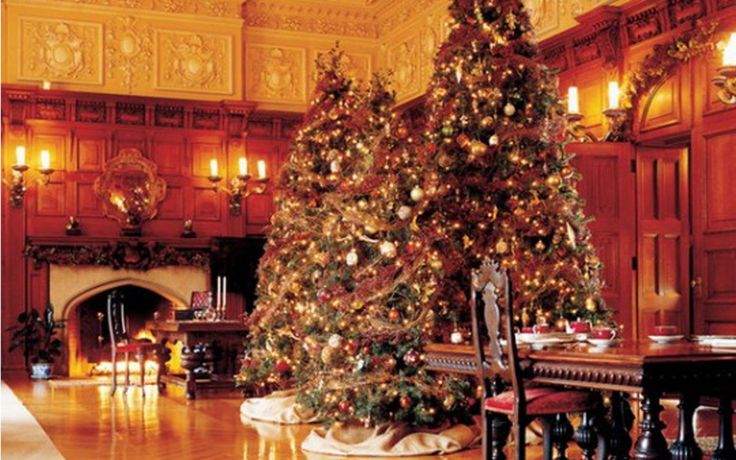 Dining Room Design with Luxury Christmas Tree Decorations