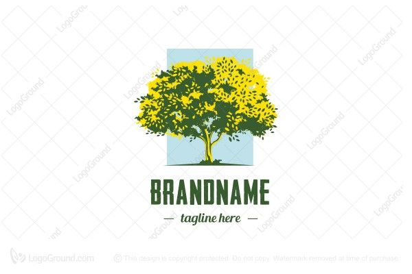 Logo for sale: Tree Logo